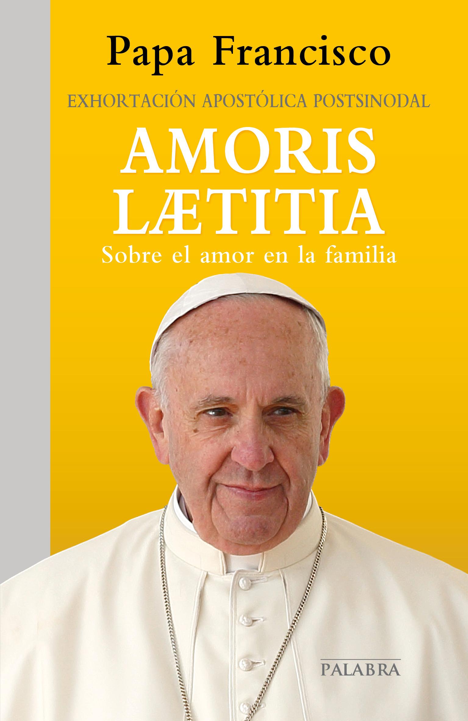 Matrimonio Catolico Resumen : Libro amoris laetitia de papa francisco